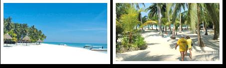 Beach of Smart Divers Resort